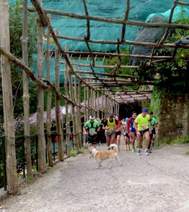 Trail Ferriere Amalfi
