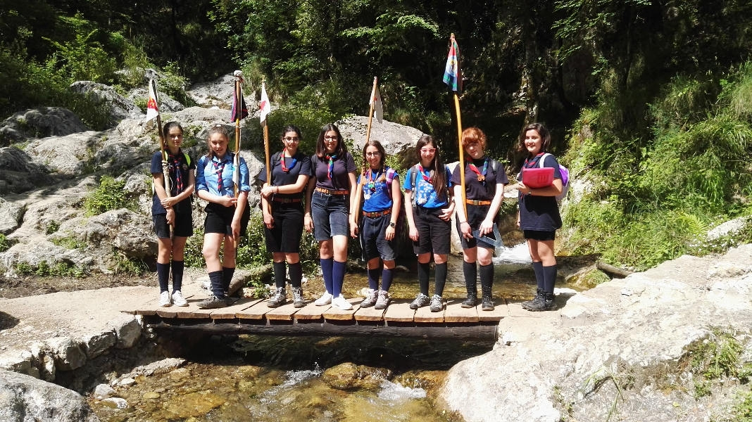 scout campo 2016
